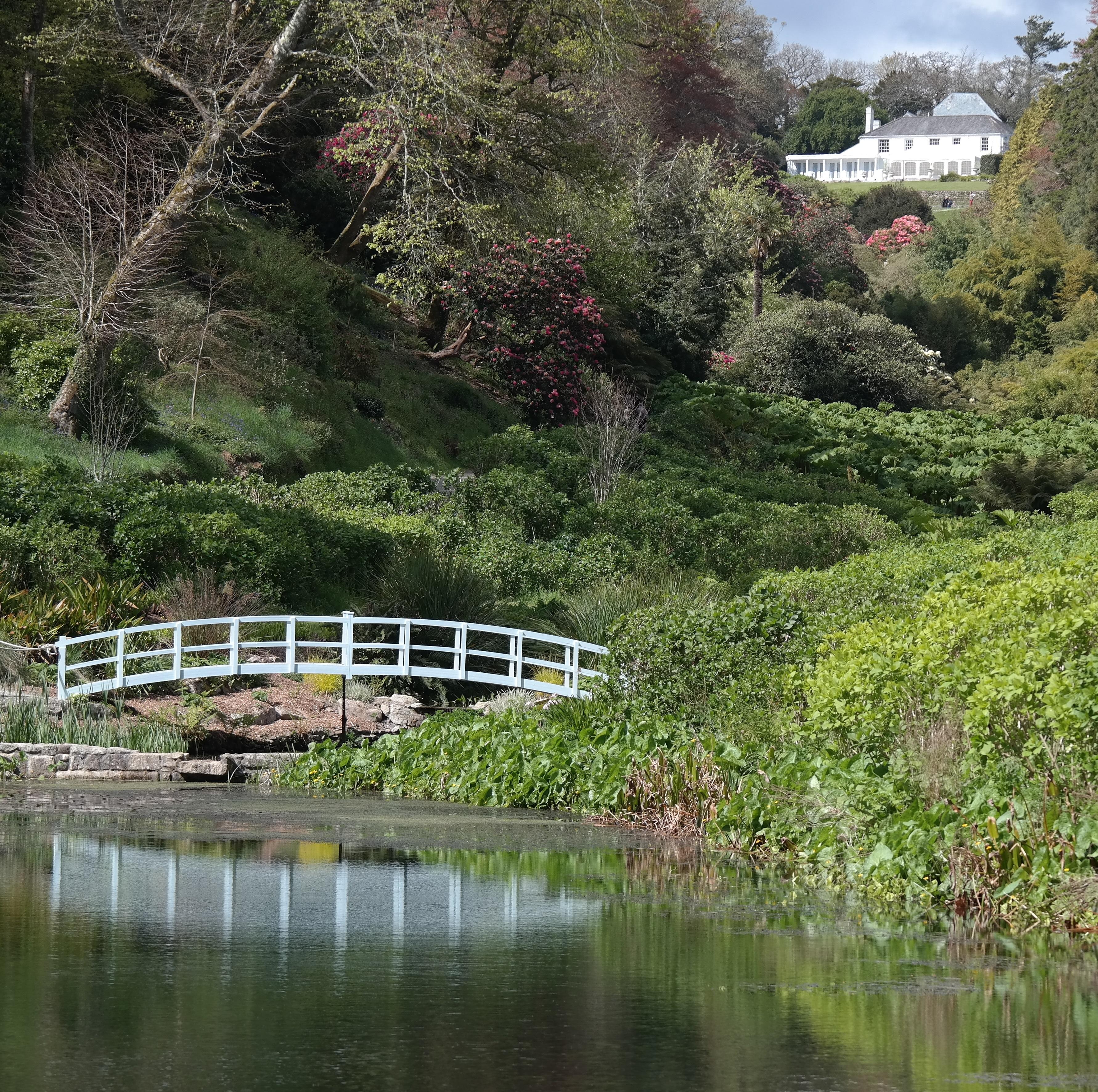 Gärten In Cornwall cornwall küsten klippen und gärten kurs 18s 205